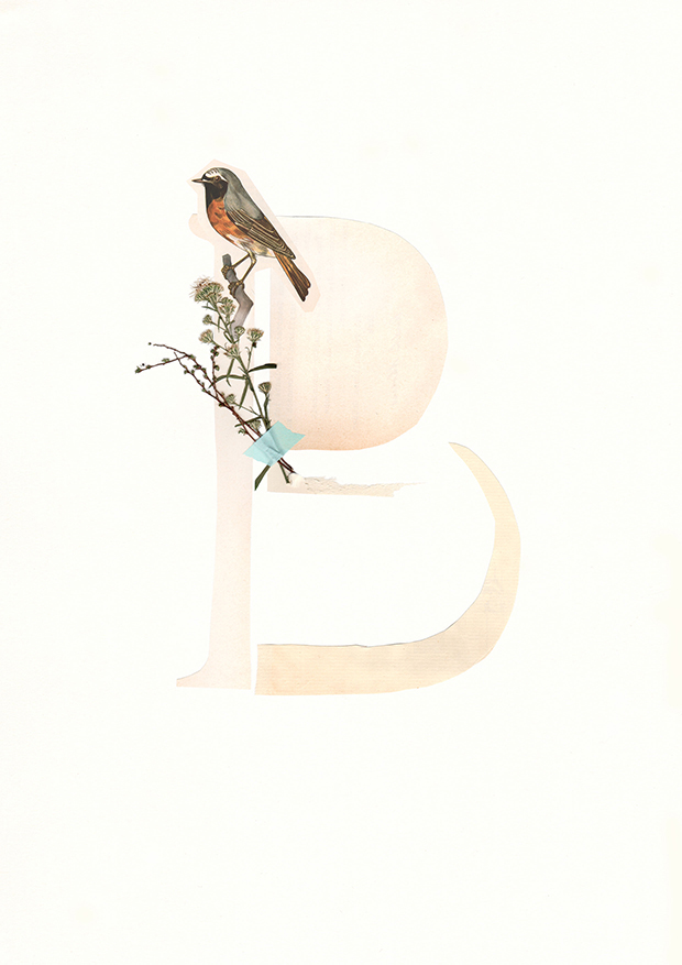 B-Alphabet-collage