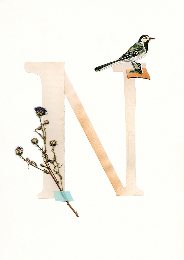 N-Alphabet-collage