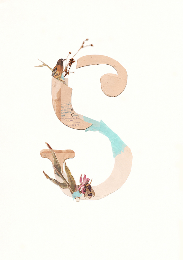 S-Alphabet-collage