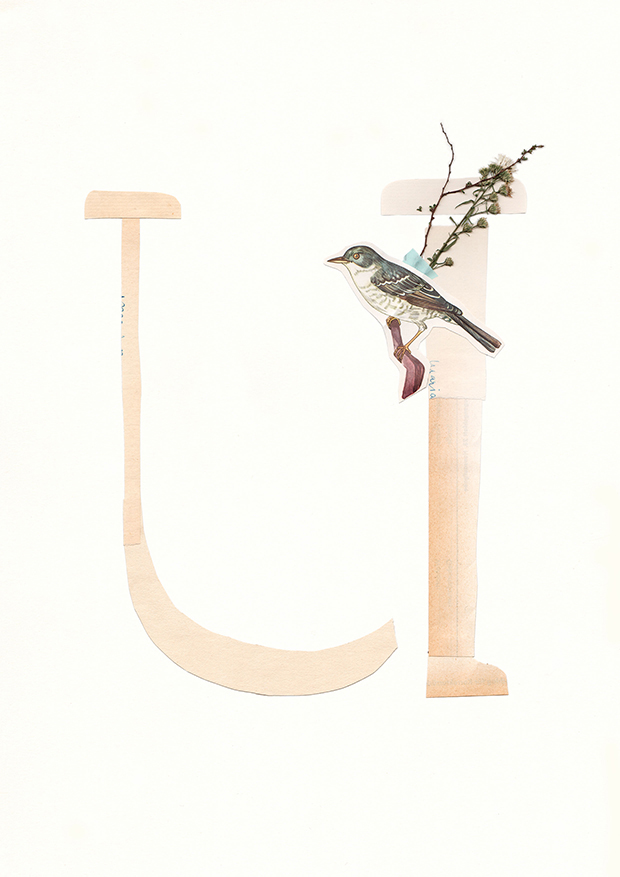 U-Alphabet-collage