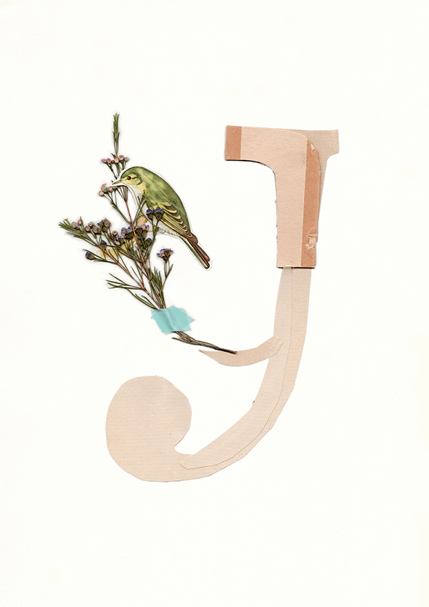 Y-Alphabet-collage