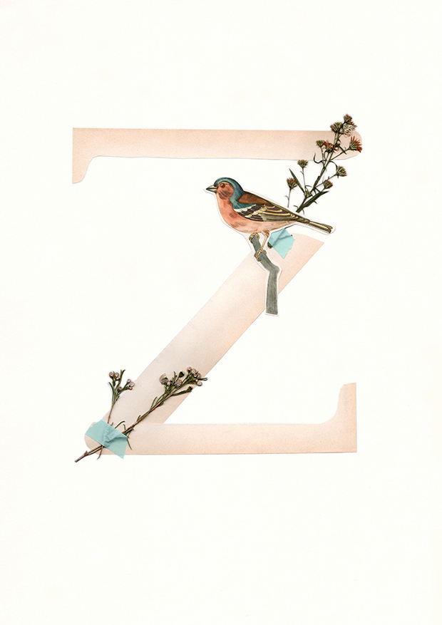 Z-Alphabet-collage